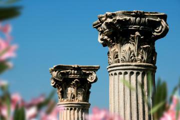 Excursion en bord de mer à Izmir: visite privée d'Éphèse, de la...