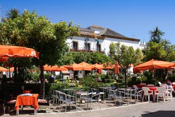 Malaga Shore Excursion: Malaga- Marbella and Puerto Banus Private Tour