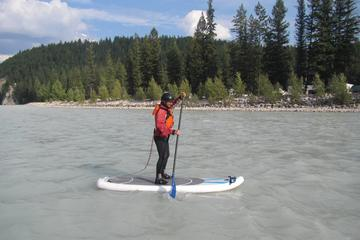 Day Trip 2-Hour Columbia Valley Evening Paddleboard Tour near Golden, Canada