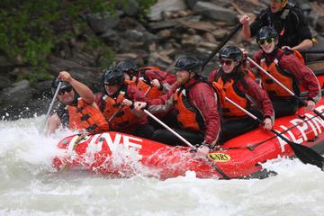 Ganztägige Wildwasserfahrt auf dem Kicking Horse River
