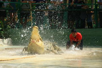 Crocodile Adventureland Admission...