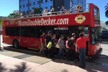 City Half Day Tour of Miami by Bus...