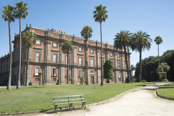 Excursão particular: Museu Capodimonte em Nápoles