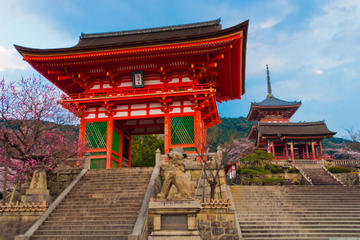 Private Kyoto Tour: Shintoism and Buddhism