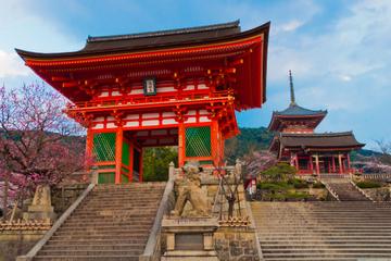 Recorrido privado a pie por Kioto con guía experto: el sintoísmo y el...