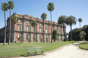 Recorrido privado: museo de Capodimonte de Nápoles
