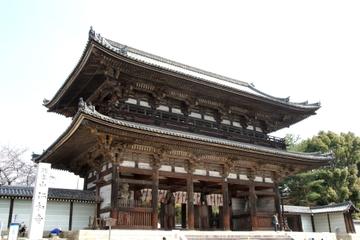 Visite à pied en petit groupe de Kyoto avec un guide expert: jardins...