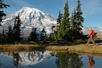 Excursión para grupos pequeños en Monte Rainier a pie o con raquetas...