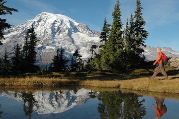 Visite en petit groupe avec déjeuner au mont Rainier