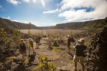 ヒロ発キラウエア ハイキングと輝く溶岩流