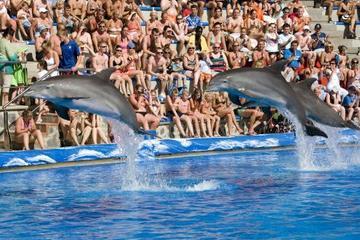 Biglietto saltafila: tour al Marineland di Mallorca
