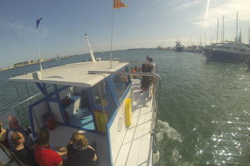 Bucht von Palma de Mallorca: Bootstour