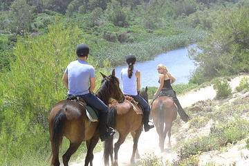 Mallorca Evening Tour: Horseback Riding, Dinner and Dance