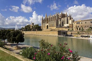 Visite privée: la vieille ville de Palma de Majorque, la cathédrale...