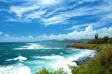 プライベートツアー: ピクニックランチ付きカウアイ島観光アドベンチャー