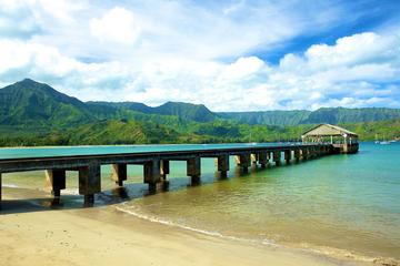 Lo mejor de Kauai por tierra, río y...