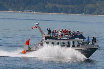 Day Trip Whale-Watching Cruise with Expert Naturalists near Victoria, Canada