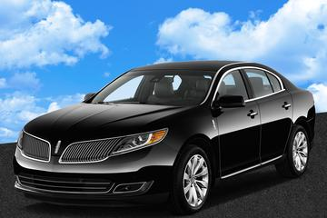 Private Arrival Transfer: Almaty International Airport to Almaty Hotels