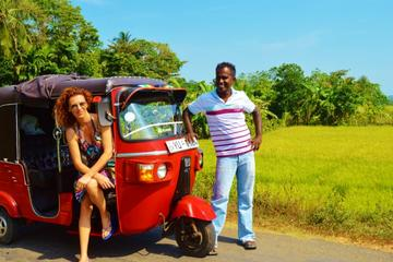 Private Tour: Udaipur Sightseeing by Tuk-Tuk With Tour Guide