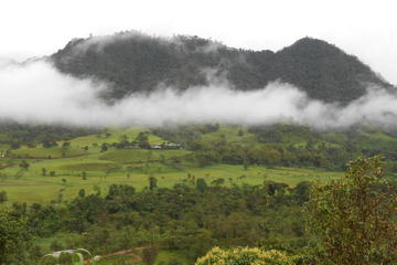 Private Tour to Mindo Cloud Forest