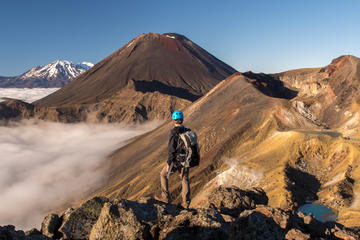 Full-Day Tongariro Alpine Crossing...