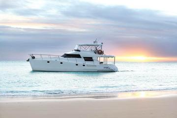 Go Fish Luxury One Day Fishing Charter from Brisbane