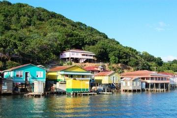 Excursión por la costa de Roatán: Crucero por el manglar