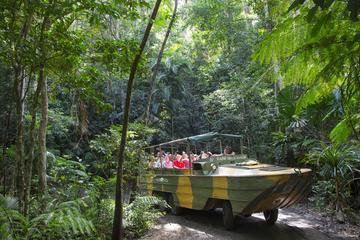 Puntos destacados de Kuranda, incluida la cultura aborigen y la fauna...