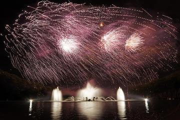 Billet coupe-file: visite du château de Versailles avec spectacle...
