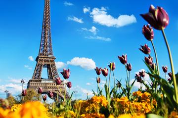 Excursion d'une journée à Paris au départ de Londres avec visite de...