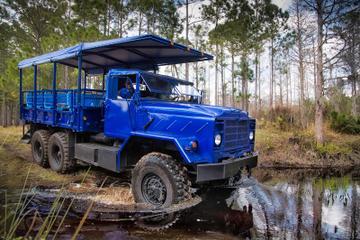Excursão de buggy no pântano e entrada para o parque de vida selvagem...
