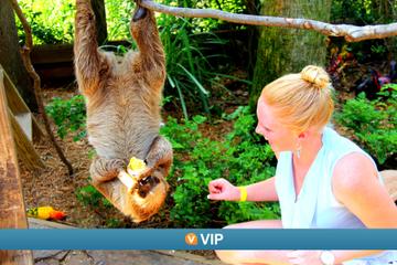 VIP de Viator: Programa de cuidadores por un día en Wild Florida