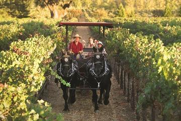 Excursão de degustação de vinhos de carruagem ou cavalo