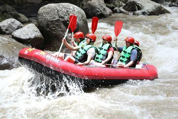 Rafting sul fiume Ayung