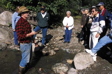 Excursão ao litoral de Juneau: mineração de ouro em rocha e bateia em...