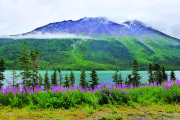 Day Trip Yukon Sightseeing Adventure by Hummer near Skagway, Alaska