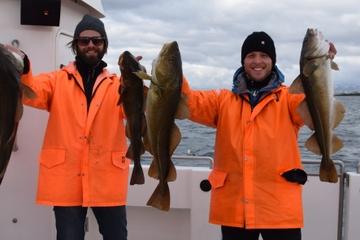 Sortie de pêche en mer au départ de Reykjavik
