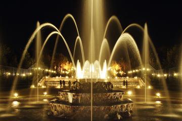 ベルサイユ庭園チケット:夏の夜の噴水ショーと花…