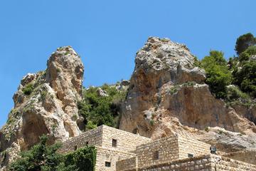 Visite privée : excursion d'une journée aux cèdres du Liban, à...