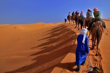 Merzouga Desert Highlights: 3-Day...