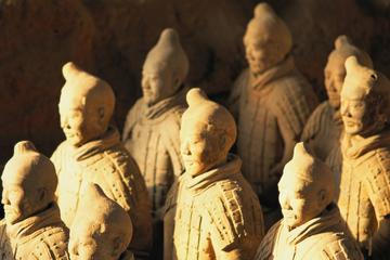 Morning or Afternoon Private Half Day Tour to Terracotta Warriors