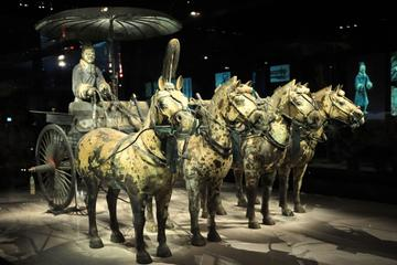 Small-Group Tour: Terracotta Warriors, Dumpling Banquet and Tang...