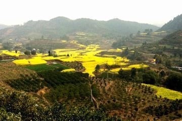 Excursão privada: Cidade Antiga de Huanglongxi e Caminhada pela Zona...
