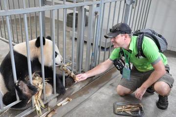Journée de bénévolat au centre de sauvetage des pandas