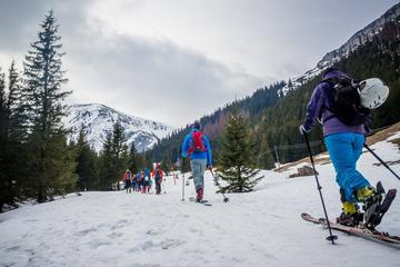 4 hours skitour trip in Tatra Mountains for beginners with renting