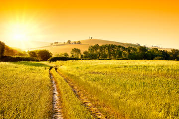 Escursione al tramonto per piccoli gruppi nel Chianti e a San