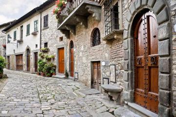 Gita di un giorno per piccoli gruppi a Castellina e Greve in Chianti