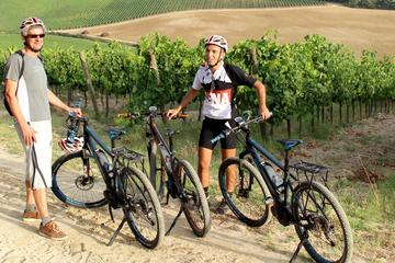 Small Group E-Bike Tour from Siena with Wine Tasting and Lunch