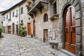 Viagem de um dia para grupos pequenos para Castellina e Greve em...