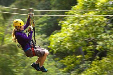 Aventura en tirolina sobre las copas de los árboles en Kohala, Isla...